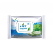 Kara Wipes